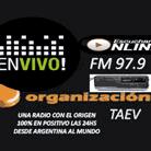 Organización Taev